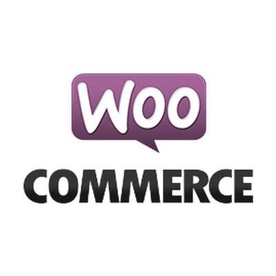 woocommerce-starten