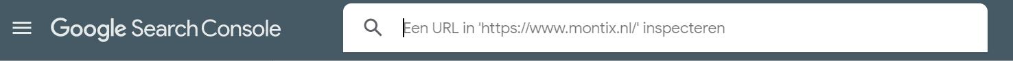 URL inspectie Indexeren