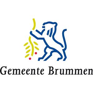 gemeente-brummen